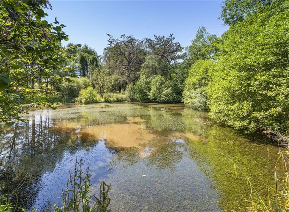 Garden and grounds (photo 4) at Gamekeepers Hide in , Ivybridge