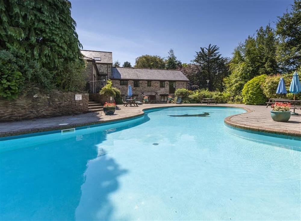 Swimming pool (photo 4) at Gamekeepers Hide in , Ivybridge