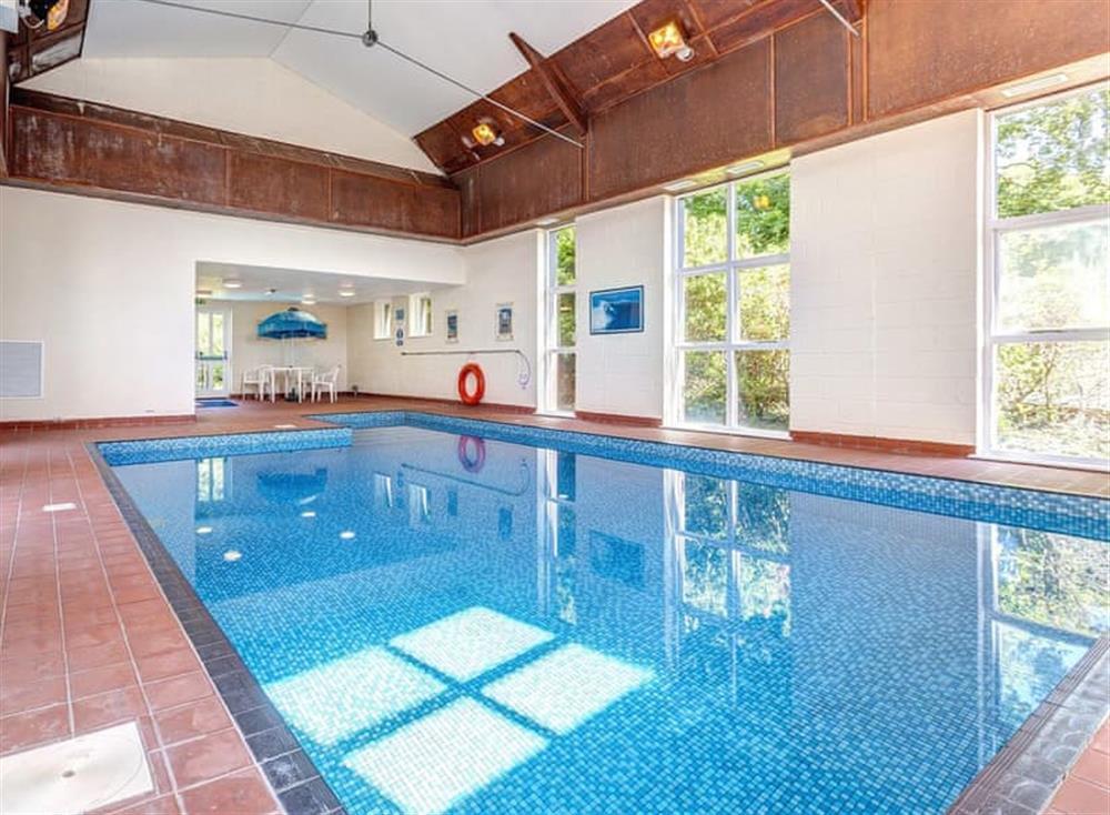 Swimming pool (photo 6) at Gamekeepers Hide in , Ivybridge