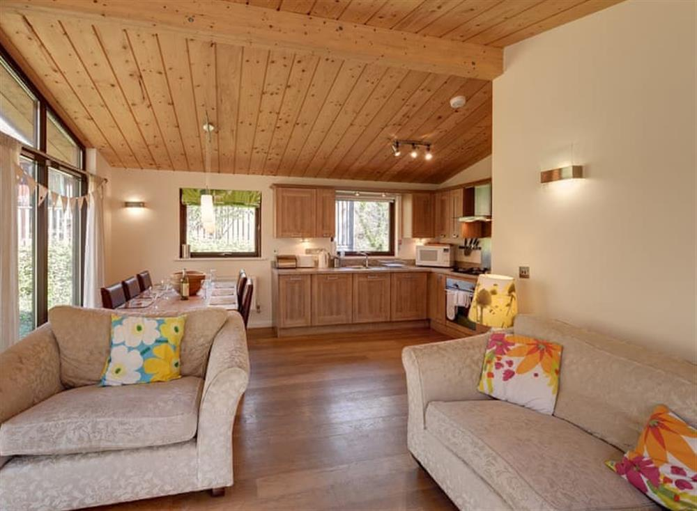 Open plan living space (photo 2) at Garden at Gara Mill in , Slapton