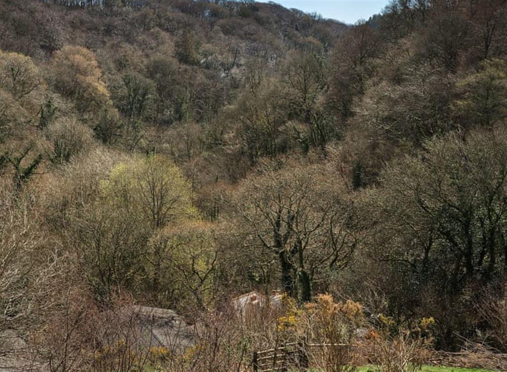 Surrounding area (photo 6) at Garden at Gara Mill in , Slapton