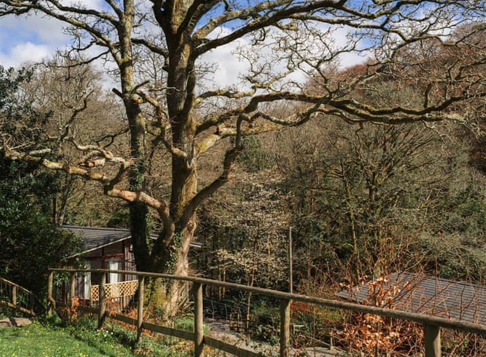 Surrounding area at Garden at Gara Mill in , Slapton