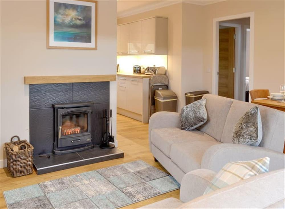 Attractive open-plan living area at Braemorlich,