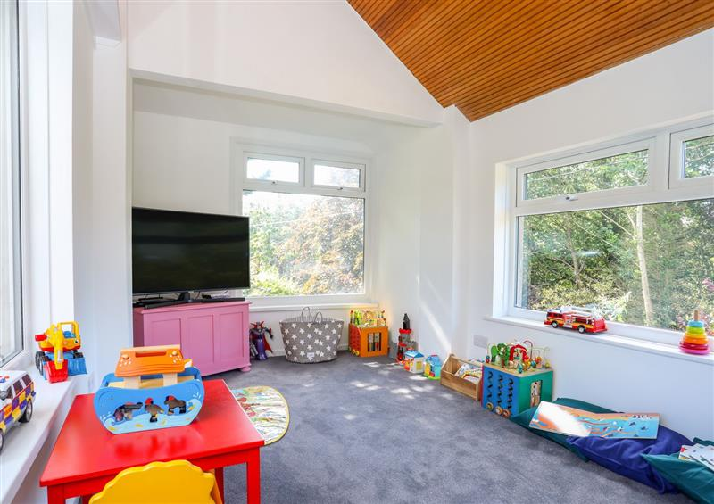 TV and play room