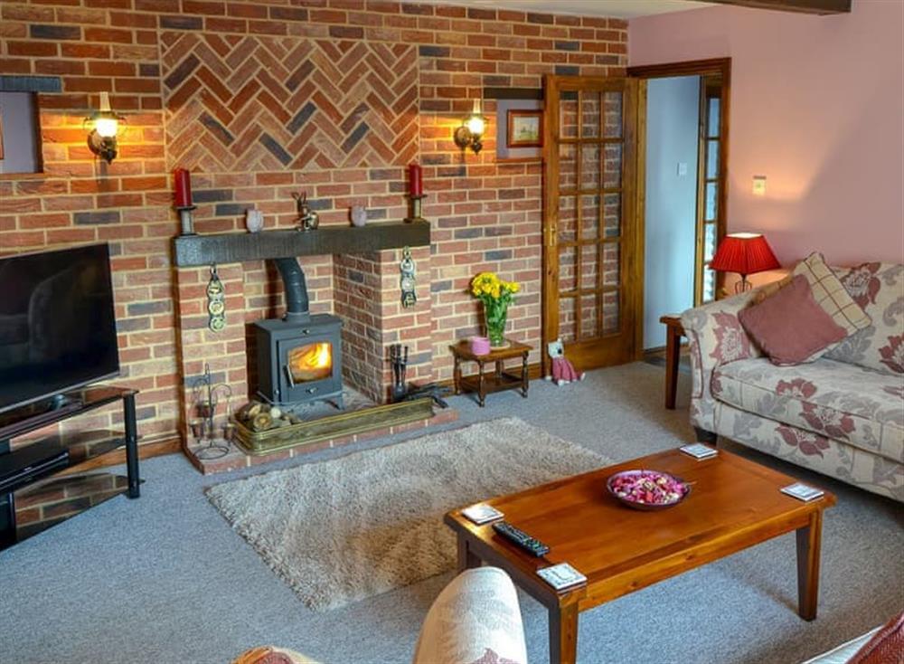 Living room 1 with wood burner at Grange Farmhouse in Hainford, near Aylsham, Norfolk