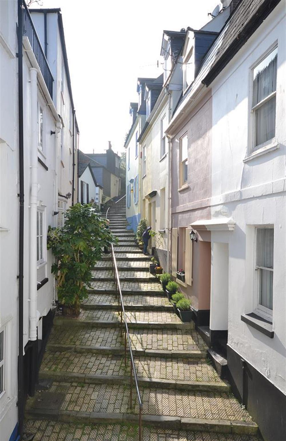 The view from the property looking up Browns Hill at Grants Cottage, Dartmouth