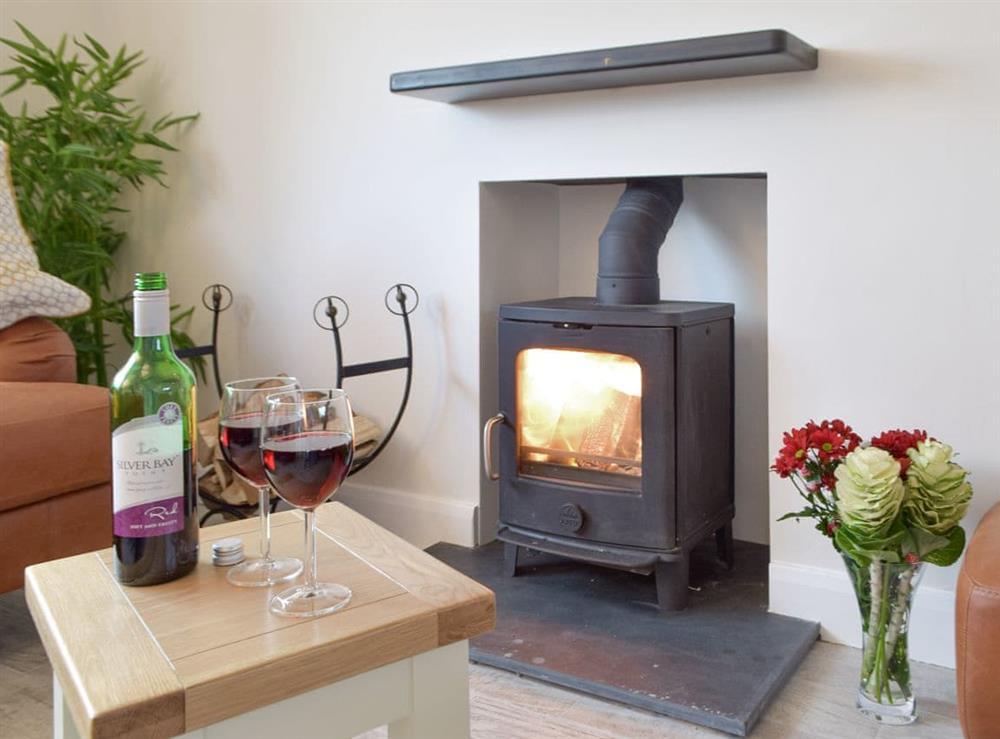 Warming wood burner at Green Acres in St Dogmaels, near Cardigan, Cardigan, Dyfed