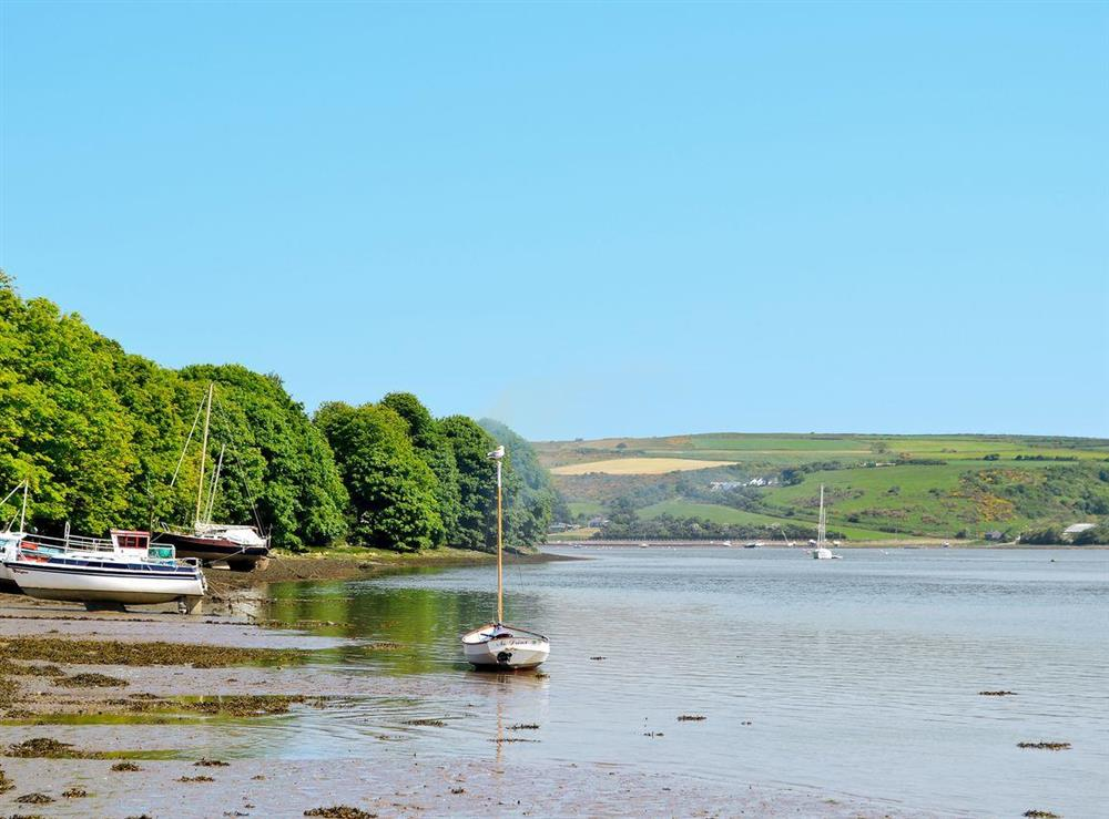 River Teifi  03 at Green Meadow in St Dogmaels, near Cardigan, Dyfed