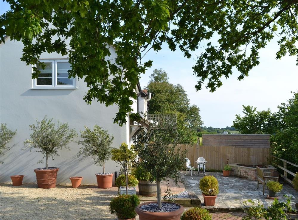 Garden at Green Oak Cottage in Sandley, near Gillingham, Dorset