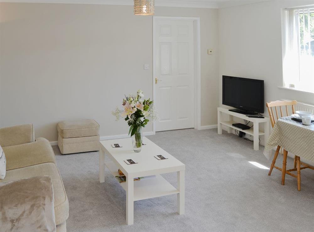 Delightful open plan living space at Greenhaven Lodge in Rackheath, near Wroxham, Norfolk