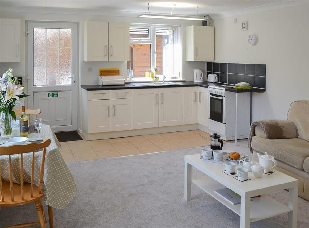 Well presented open plan living space at Greenhaven Lodge in Rackheath, near Wroxham, Norfolk