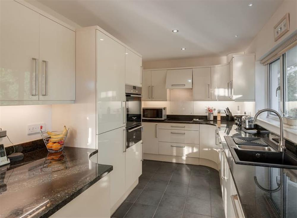 Kitchen at Guillemots in , Brixham