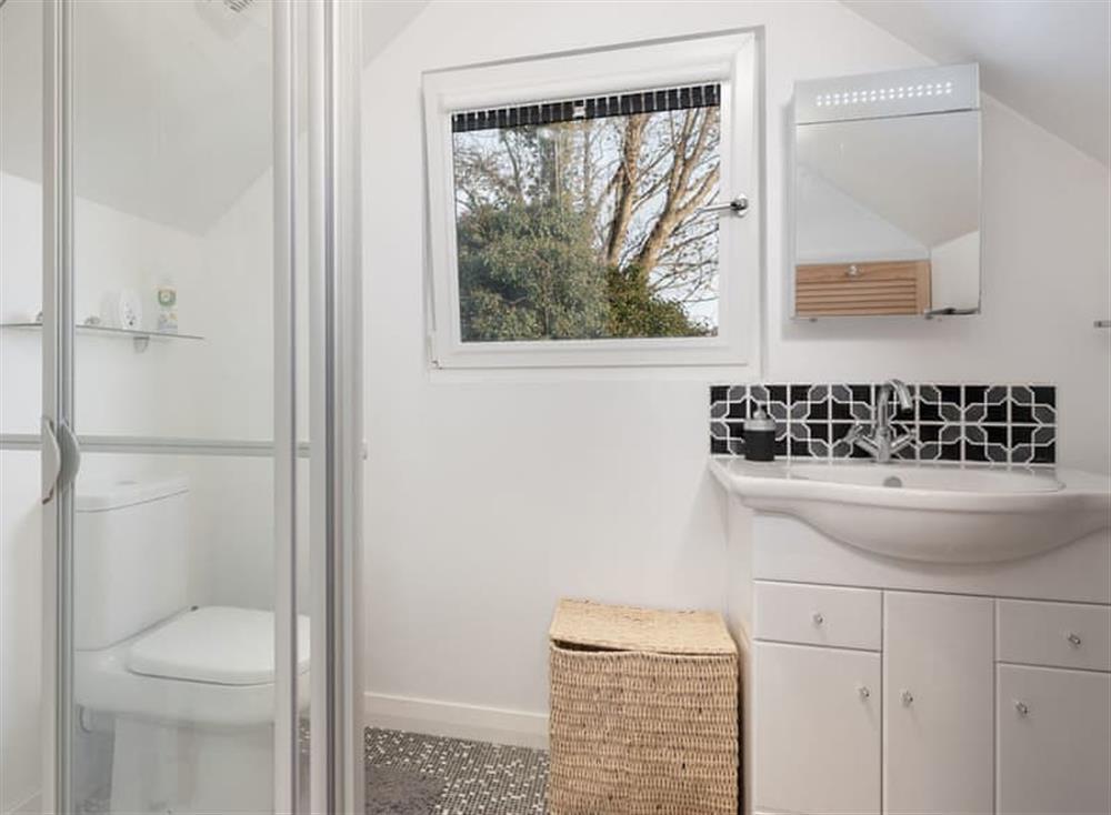 Shower room at Guillemots in , Brixham