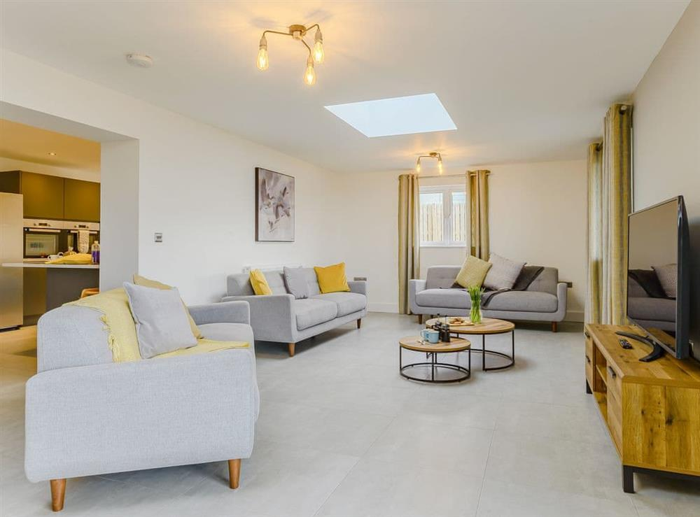 Comfortable living area at Meusydd,
