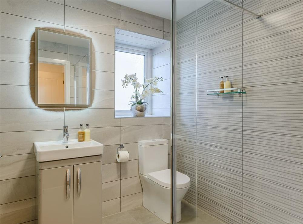 Shower room (photo 2) at Meusydd,