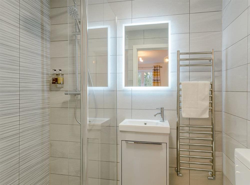 Shower room (photo 3) at Meusydd,