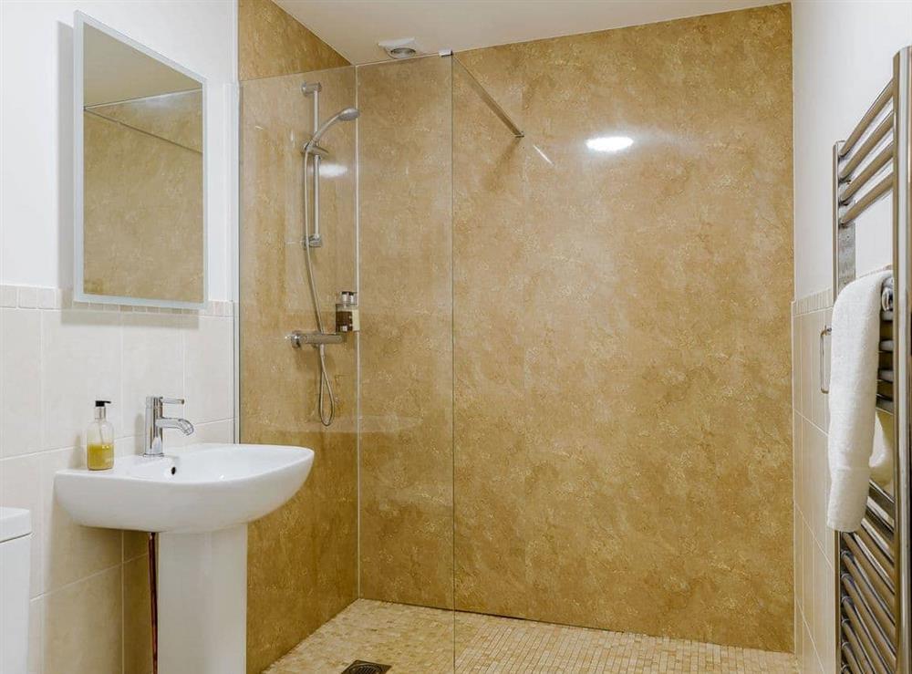 Shower room (photo 4) at Meusydd,