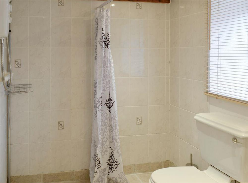 Wet-room with walk-in shower area at Bluebell,