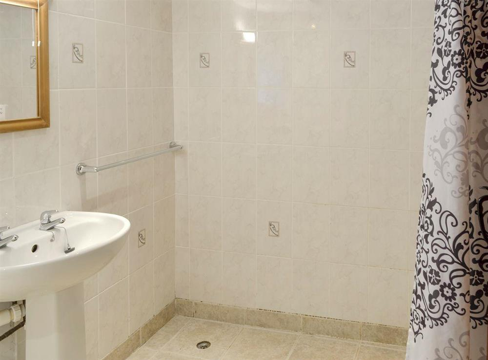 Shower room with walk-in shower area at Primrose,