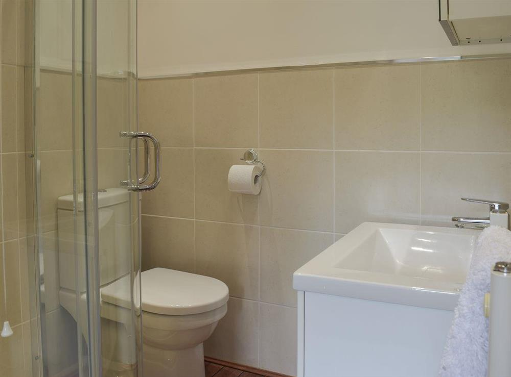 Shower room (photo 2) at Hafan Dawel in Stepaside, near Saundersfoot, Pembrokeshire, Dyfed