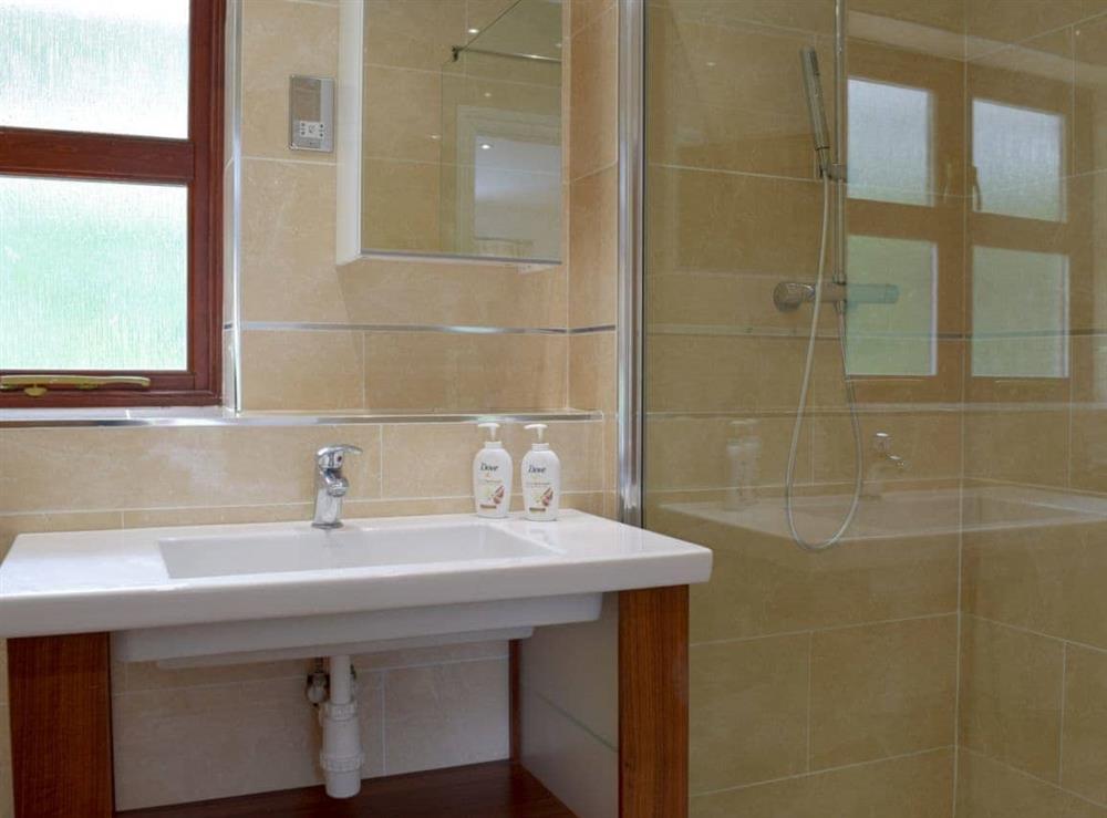 Shower room at Hafan Dawel in Stepaside, near Saundersfoot, Pembrokeshire, Dyfed