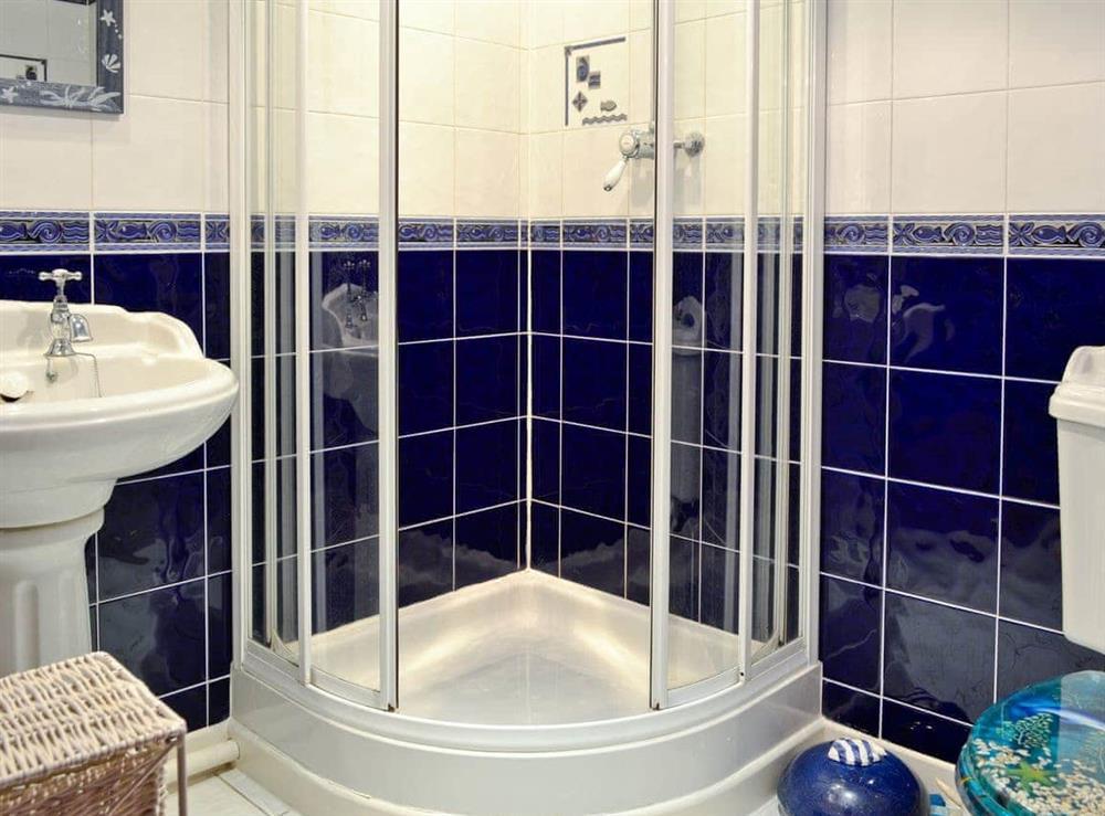 Shower room at Hafoty Boeth Cottage in Bryn Saith Marchog, near Ruthin, Clwyd