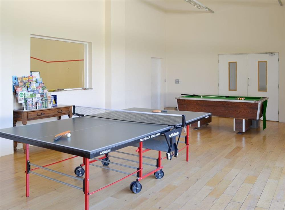 Recreation area with table tennis and pool table at Harriss Park in Halwell, Totnes, Devon