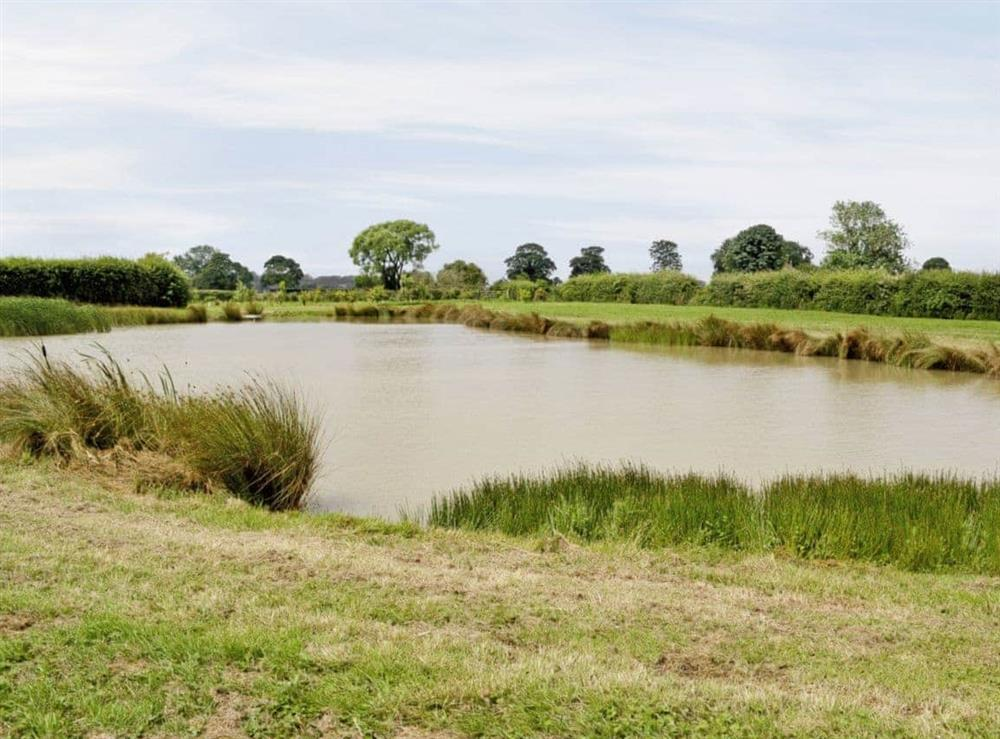 Fishing Lake at Harvest Cottage in Alford, Aberdeenshire