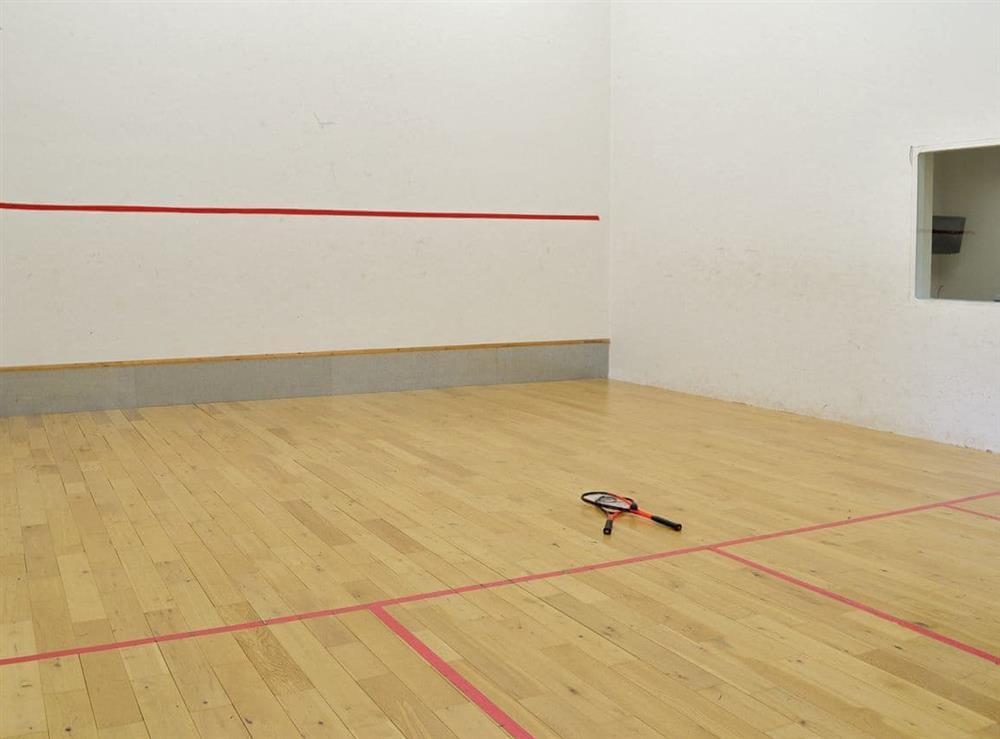 Squash court at Harvest Cottage in Harbertonford, near Totnes, Devon