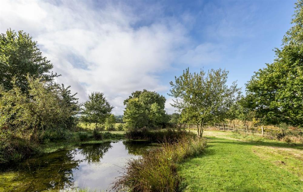 Hearn Lodge has access to twelve acres of wildlife meadows, a stream and a pond