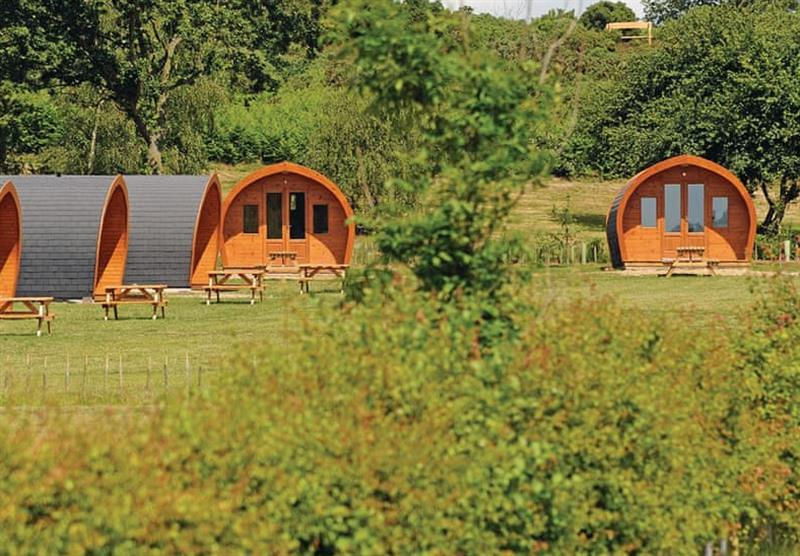 The park setting at Heathside Pods in Wenhaston, Halesworth
