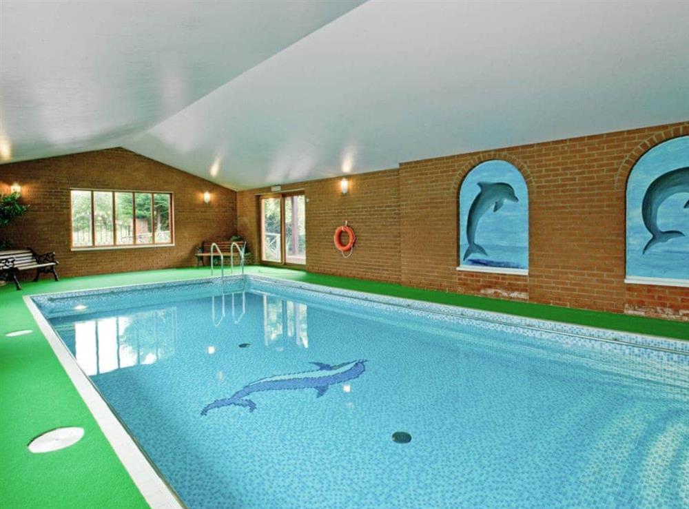 Swimming pool at Heron in Wayford Bridge, near Stalham, Norfolk