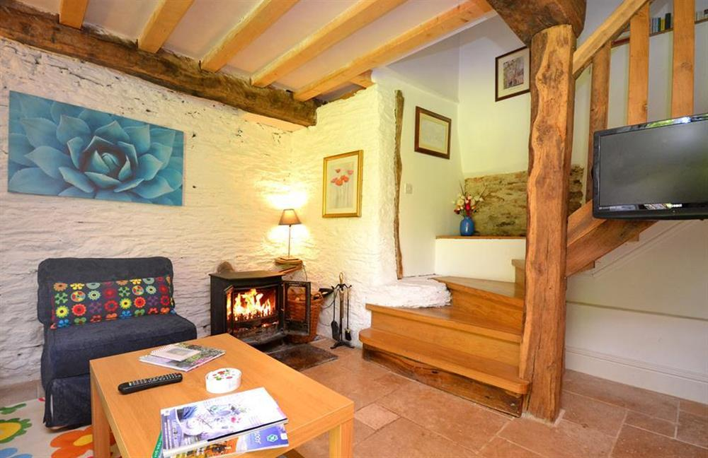The cosy woodburner stove at Higher Cotterbury Cottage, Blackawton
