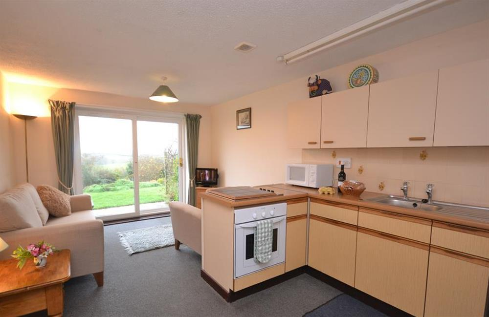 The open plan kitchen and living room at Higher Norton Farm, The Annexe, East Allington