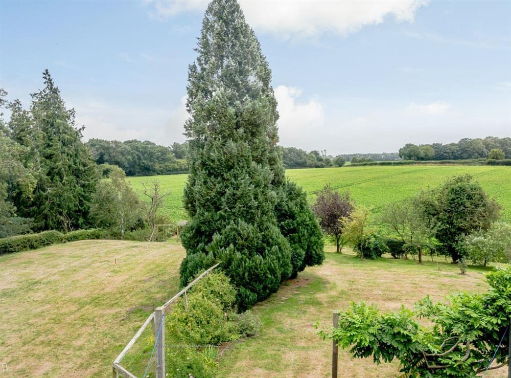 View at Hilley Holey in Woodbastwick, near Norwich, Norfolk