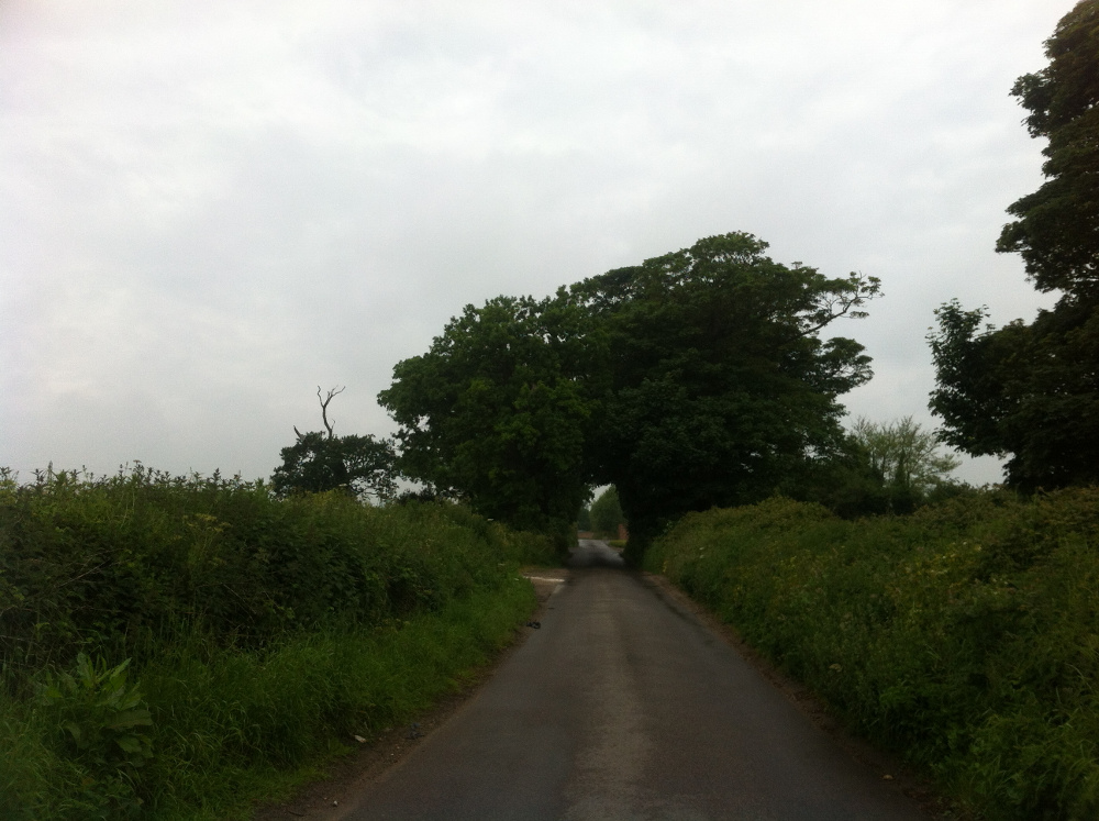 Country lane outside Hobland Barn
