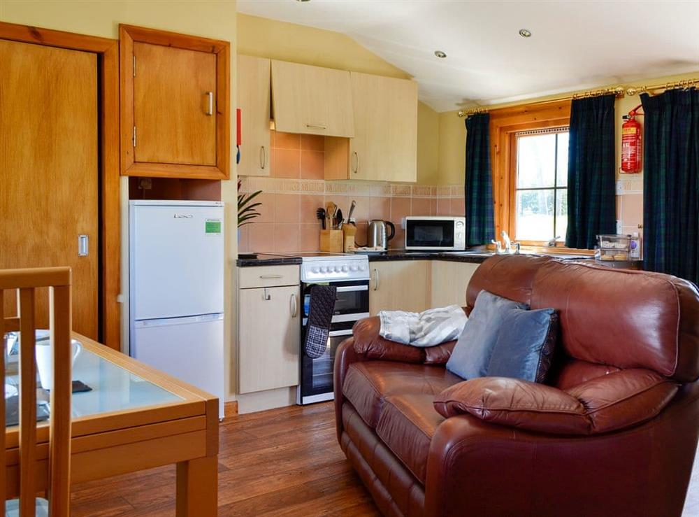 Open plan living space at Holly in Forfar, Angus
