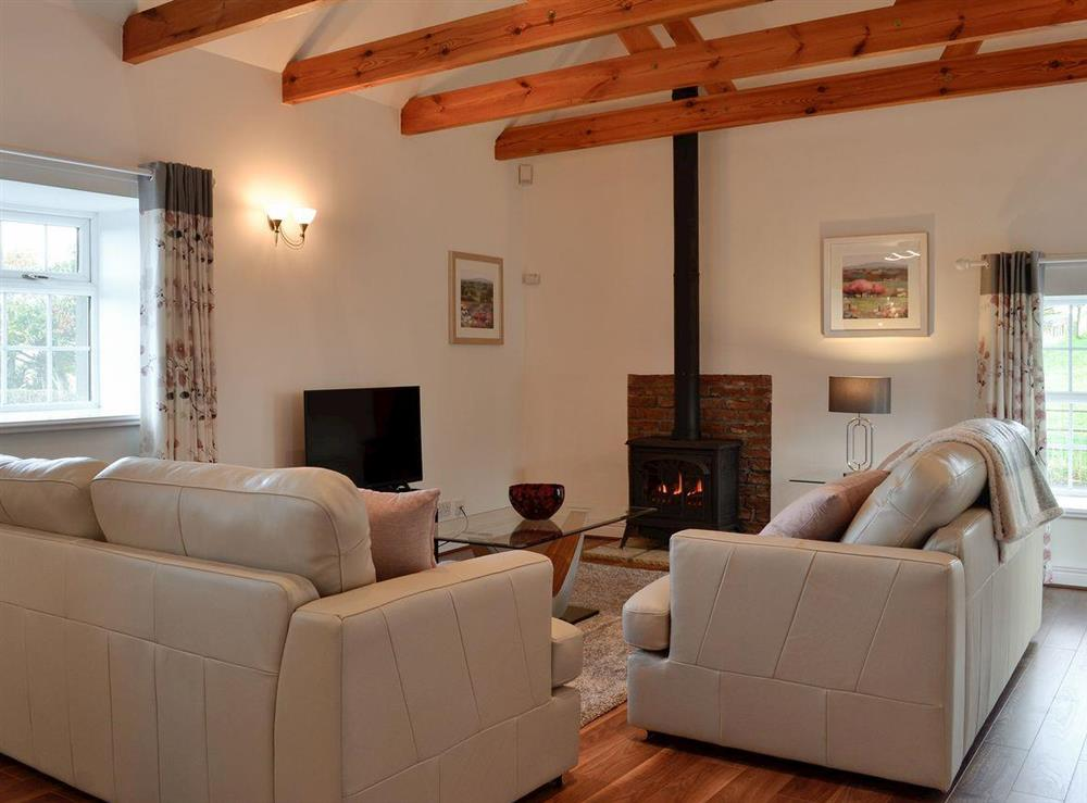 Living room with gas wood burner at Doon Cottage,