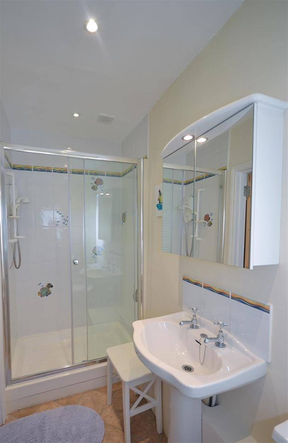 The ground floor shower room at Homelands, Dittisham