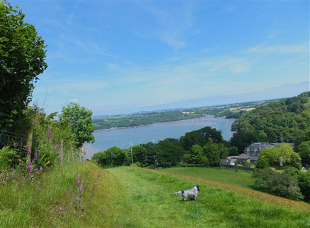 The village offers fabulous walking and stunning views at Homelands, Dittisham