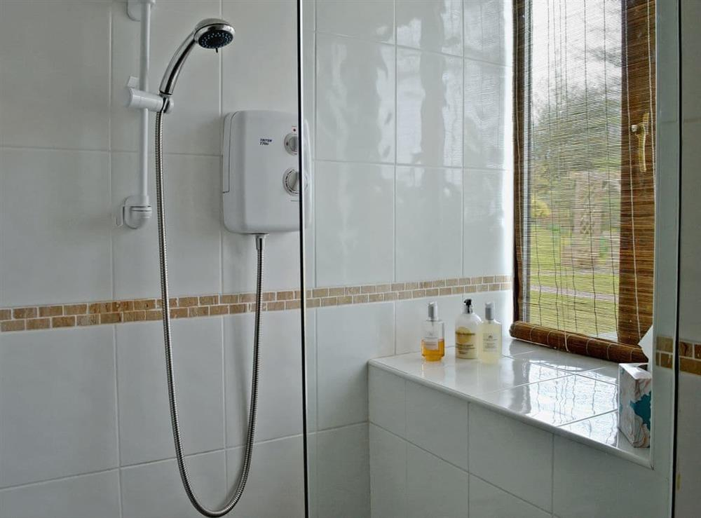 Shower room with walk-in shower at Honeysuckle Cottage in Mold, Clwyd
