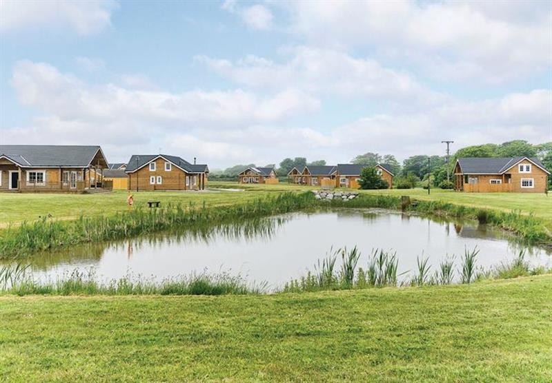 The park setting (photo number 5) at Hornsea Lakeside Lodges in , Hornsea