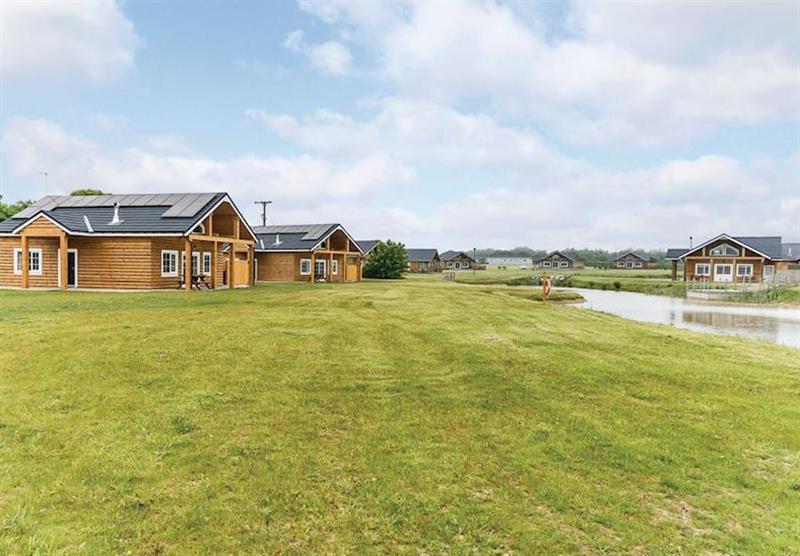 The park setting (photo number 8) at Hornsea Lakeside Lodges in , Hornsea