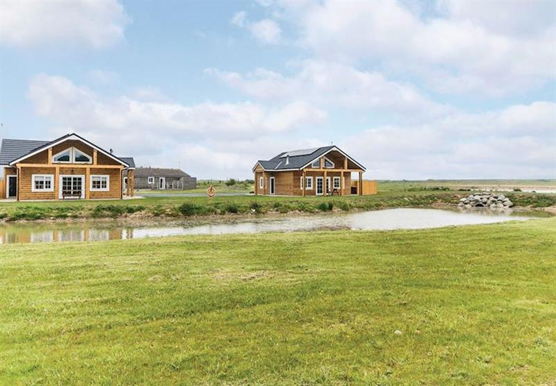 The park setting (photo number 9) at Hornsea Lakeside Lodges in , Hornsea