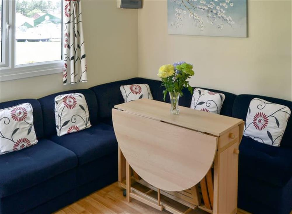 Comfy living area at White Moth,
