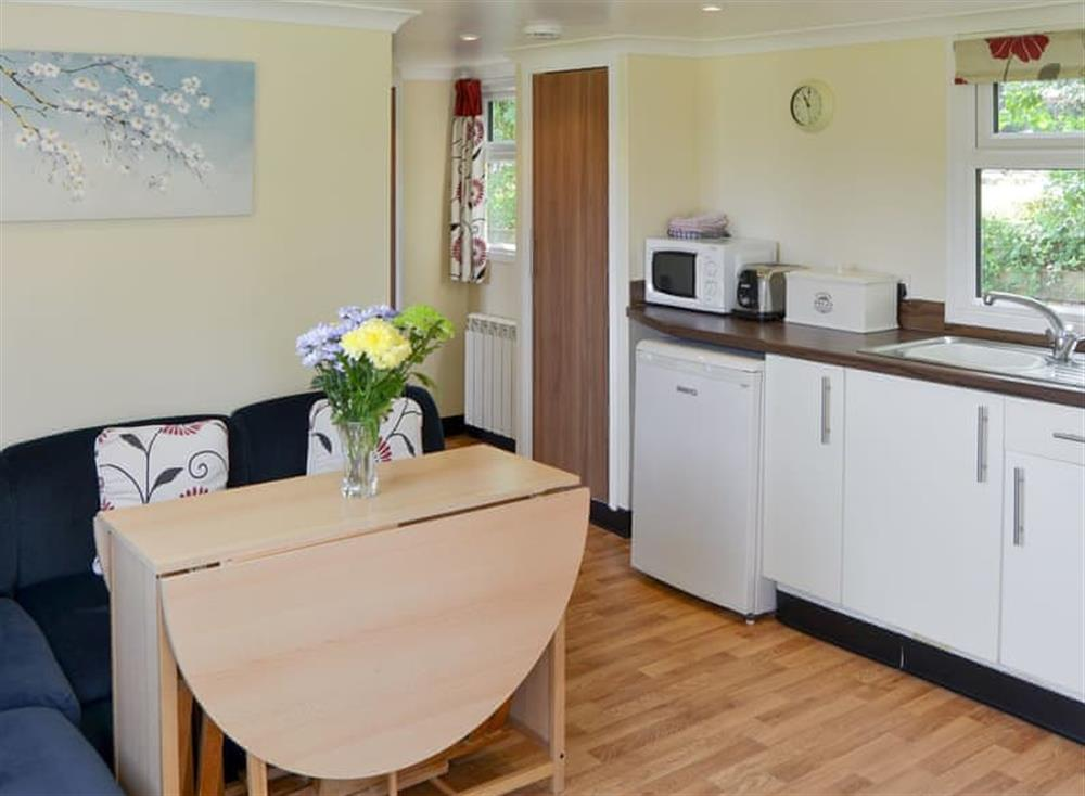 Open plan living space at White Moth,