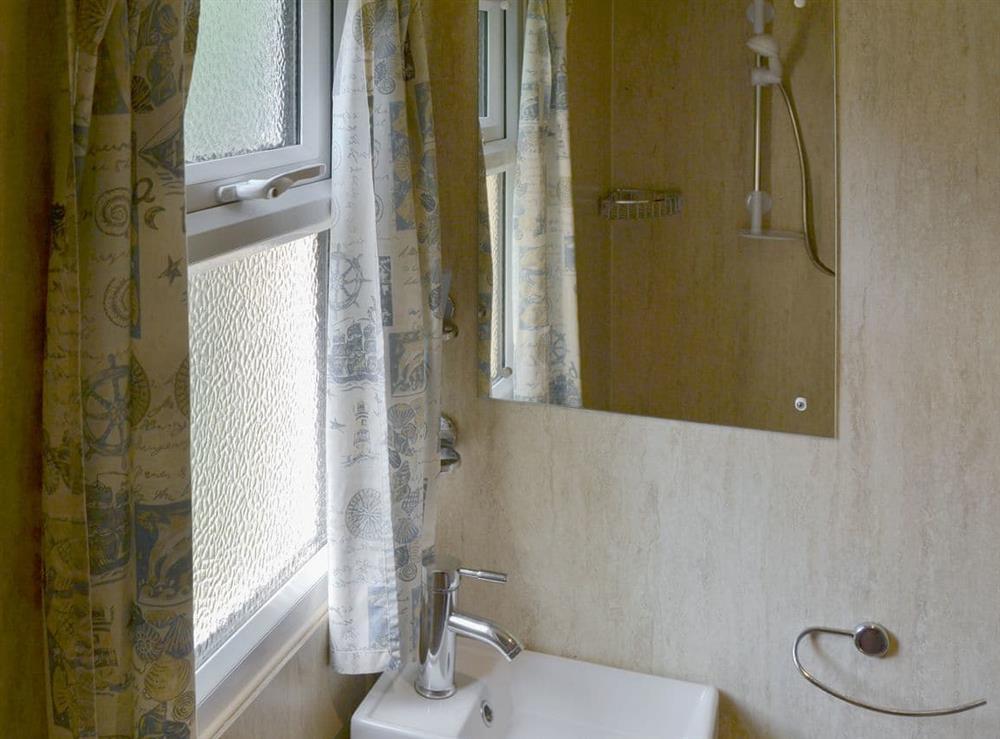 Shower room at White Moth,