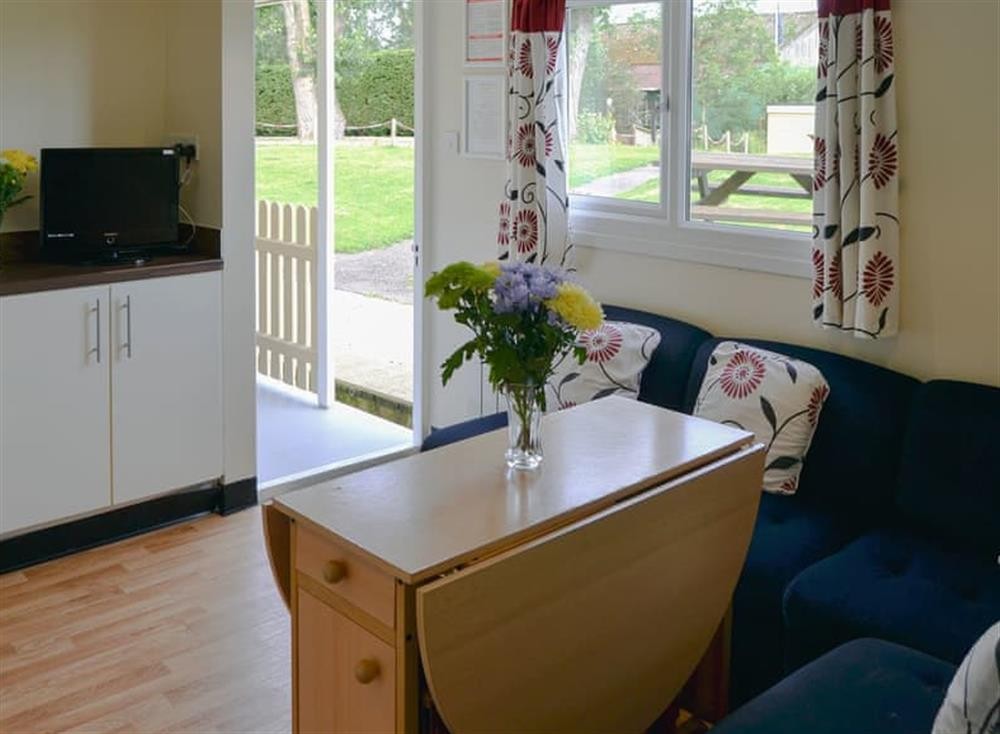 Well presented open plan living space at White Moth,