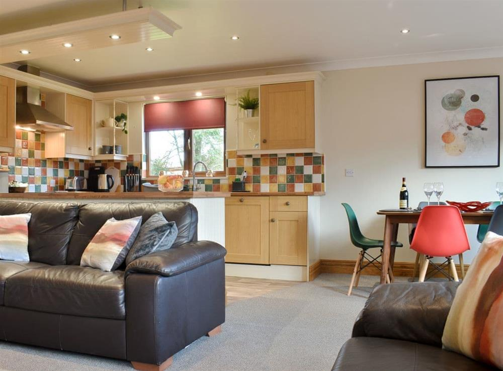 Open plan living space at Hygge Lodge in Flamborough, North Humberside