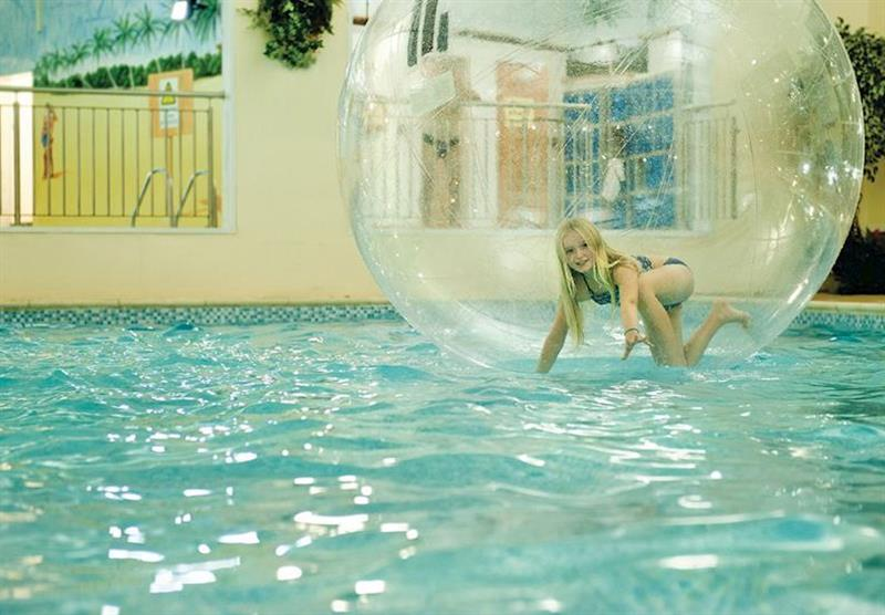 Zorbs at Ilfracombe Holiday Park in , Devon